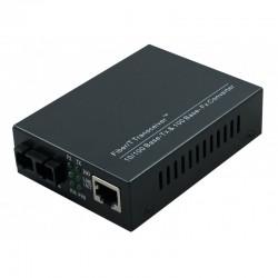 SC Singlemode 100Mbps Fibre Media Converter